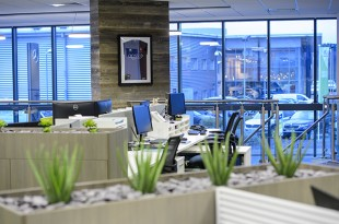 Benefits of a branded and creative office space - APPS Showcase